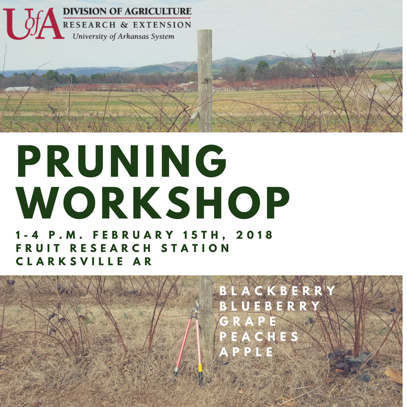 UA logo with open field background Pruning workshop on February 18, 2018